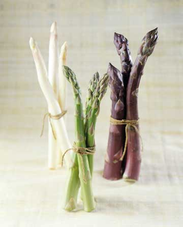 asparagus-stems-white-green-purple-plus-
