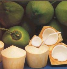 Young coconuts prepared for consumption, husk removed. Photo:answers.com
